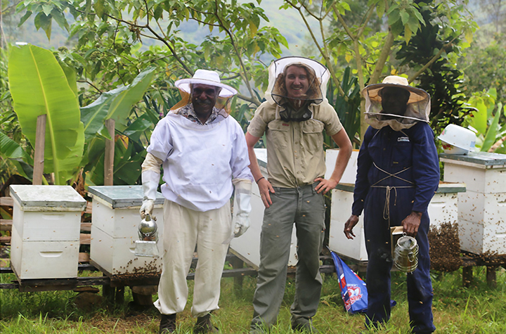Harvesting honey in the highlands of PNG with beekeeping guru Mr Wilson Tomato (left), Dr Cooper Schouten and Mr Paki Billy in partnership with the Market Development Facility and Highlands Honey. Credit Coooper Schouten