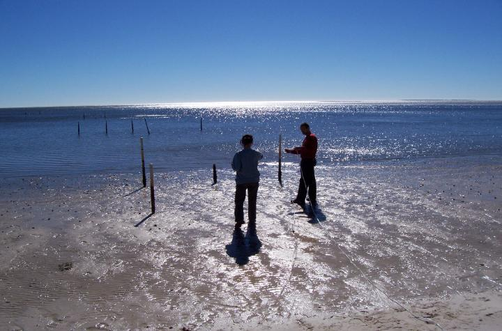 Two people on a beach shoreline setting up scientific instruments.